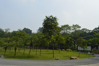 永泰乒乓体育公园风景