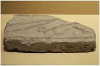 渤海时期印纹板瓦