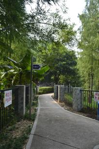 公园人行道