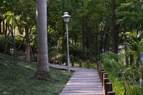 公园休闲路径一角