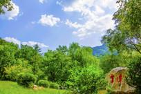 千山云潭树木与蓝天白云