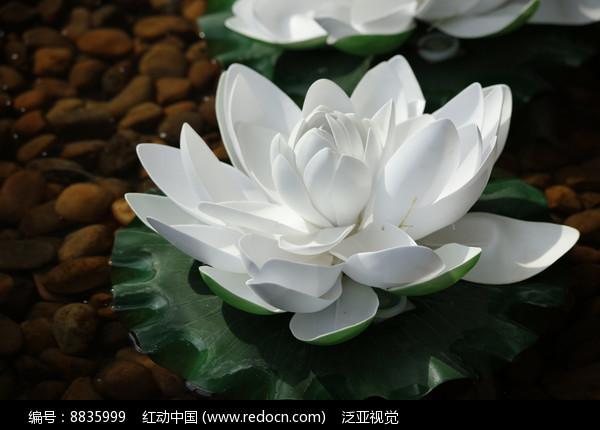 莲花雕塑图片_水池中的莲花雕塑高清图片下载_红动网