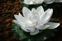 水池中的莲花雕塑