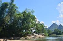 湖边的竹树风景