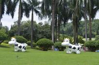 两只可爱的假奶牛