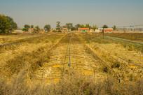 大棚钢架与村庄