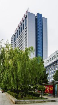辽宁省肿瘤医院与树木