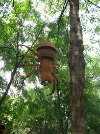 树上掉下来的蜘蛛
