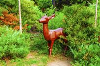 草丛从中的一只母鹿