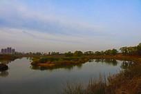 柴河堤岸风景