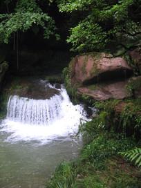 丛林深处喷涌出的清泉