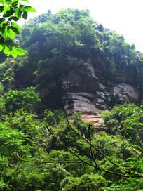 密林中的巨石
