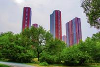 万泉公园树木与高层建筑