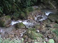 清澈的泉水从山间流过