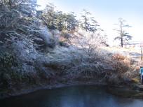 冰凌覆盖的树木与冻结的池塘