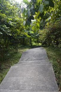 雕塑公园阶梯式道路