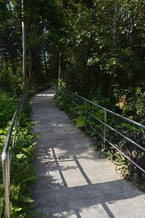 公园园区道路