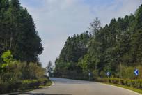 绿色弯道路径