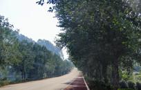 美丽乡村道