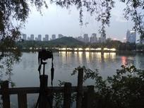 公园中的摄影相机