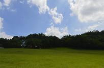 广州雕塑公园大草坪