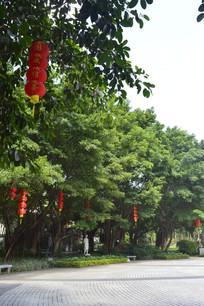 广州雕塑公园风景景观