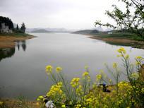红枫湖的春天