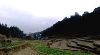 胜利侗寨田园风光