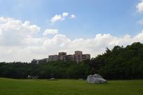 天空户外雕塑绿植草坪