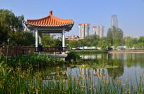 湖边亭子风景