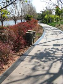 湖畔漂亮的园林与青石小径
