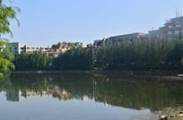 蓝天湖泊公园风景