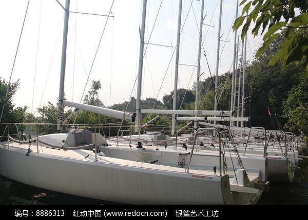 排列整齐的帆船与桅杆图片