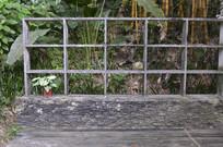 墙边摆放植物区域