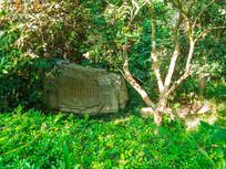 高榜山的景观石头