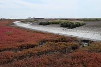红海滩及远处的河流