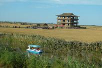 湿地及草地