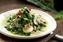 手捏菜蘑菇炒肉片