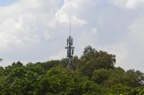 树木掩映的塔式建筑