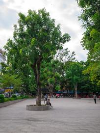惠州西湖边的小广场