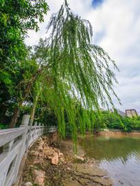 惠州西湖丰湖湖边
