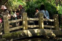 桥上的游客