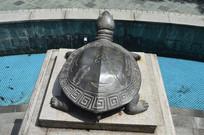 乌龟青铜雕塑