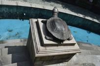 一只铸铜乌龟雕塑