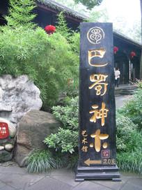 巴蜀神木艺术馆外的竹林