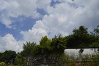 和黄神农草堂园区景观
