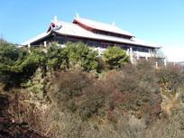 华藏寺前的山崖与树丛