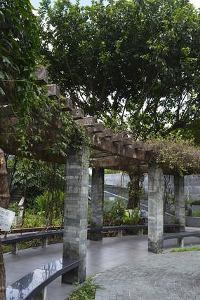 树木及绿藤亭廊