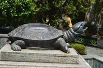 乌龟雕塑图片