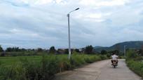 乡间小路风景